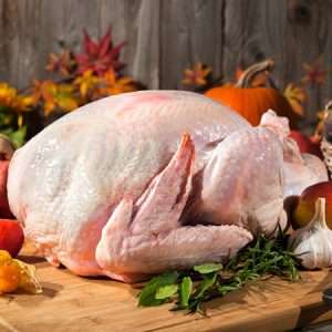 a whole uncooked turkey